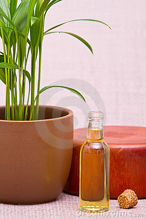 Essential oils for massage