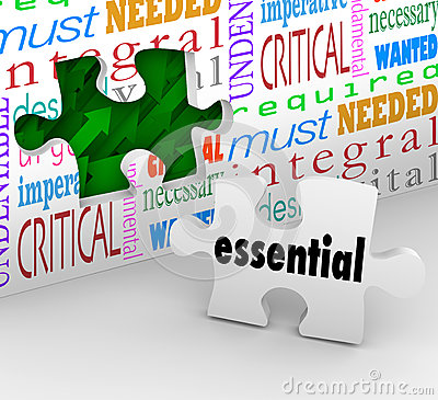 Free Essential Puzzle Piece Fills Hole Necessary Integral Needed Prod Stock Image - 46013051
