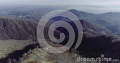 Establisher aéreo lateral do voo do zangão sobre madeiras da floresta com montanhas e planos no inverno Neve no natur da montanha video estoque