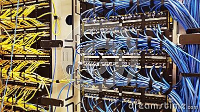 Estante con los cables gen?ricos de Ethernet cat5e metrajes