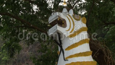 Estatua del dragón del tigre almacen de metraje de vídeo