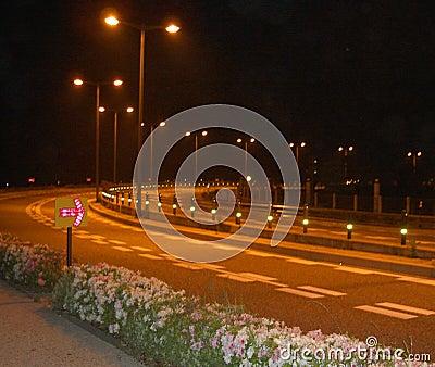 Estrada da noite