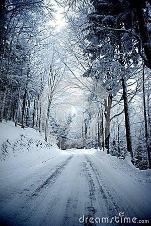 Estrada do inverno
