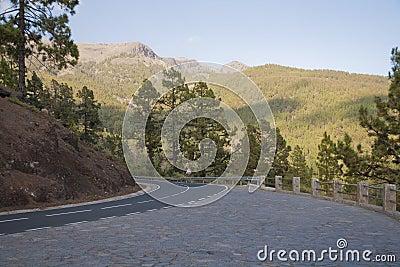 Estrada em Tenerife