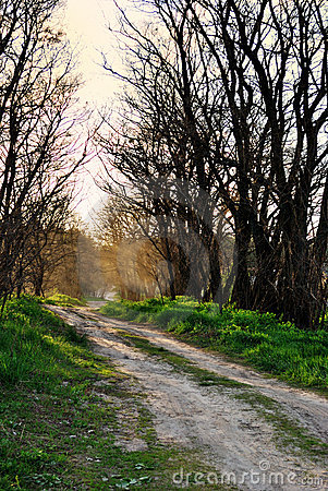 Estrada rural, poeira