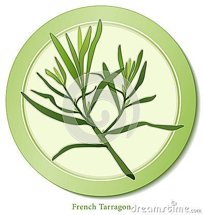 Estragon français d herbe