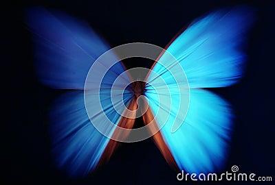 Stock libere da diritti: estratto blu della farfalla con lo zoom