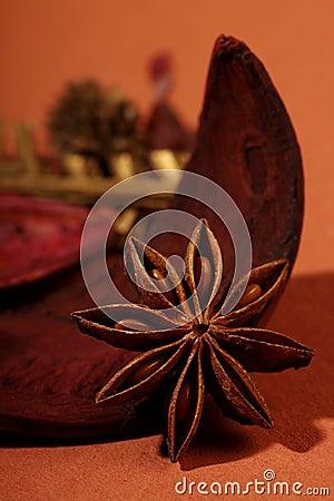 Estrella india del anís de la hierba
