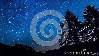 Estrellas del cielo nocturno de Timelapse Silueta de la montaña y de los árboles