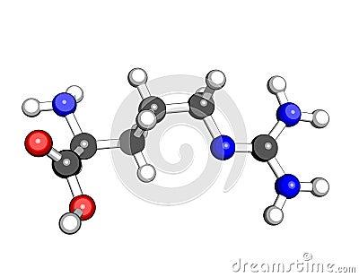 Estructura molecular de la arginina del aminoácido