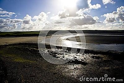 Estuary at low tide