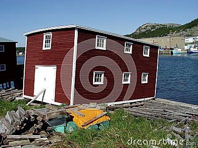 Etapa de la pesca de Terranova