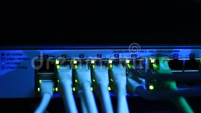 Ethernet Switch With Blinking Leds Stock Video Video