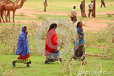 Ethiopia Editorial Photo