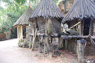 Ethiopian style huts- Africa