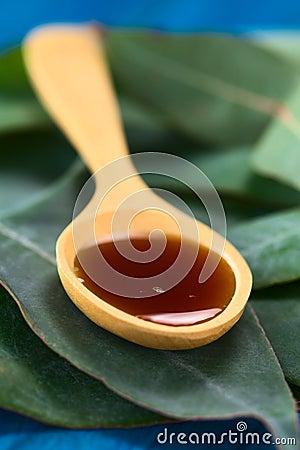 Free Eucalyptus Cough Syrup Royalty Free Stock Photo - 34737835