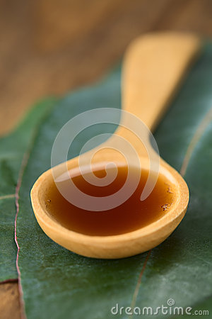 Free Eucalyptus Cough Syrup Royalty Free Stock Image - 34738136