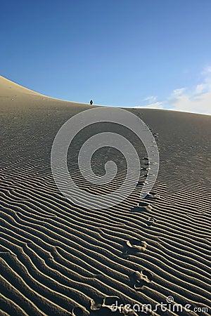 Free Eureka Sand Dunes Royalty Free Stock Images - 660979