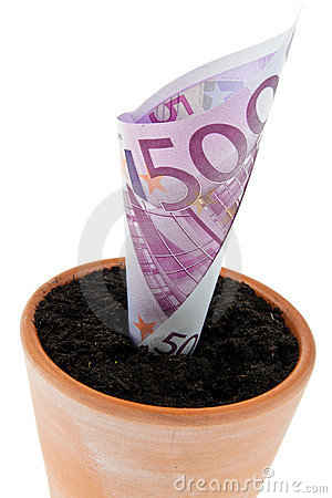 Euro-bill in flower pot. Interest rates, growth.