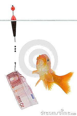 Euro and goldfish