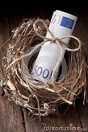 Euro Nest Egg Money