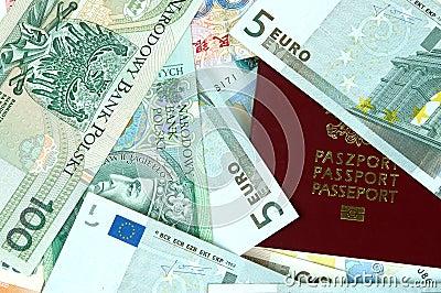 Euro, Polish Zlotych, RMB money