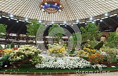 Euroflora 2011, Genova, Italy Editorial Stock Photo