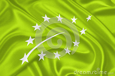 European new organic logo