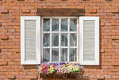 European Style Window And Flower Pot Stock Photo Image