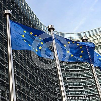 Free European Union Flags Royalty Free Stock Photo - 38510675