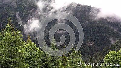 Evaporación en las montañas metrajes