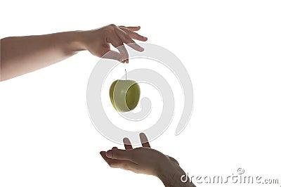Eve adam and green apple