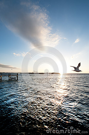 Free Evening In Bayport, Florida Royalty Free Stock Images - 28992779