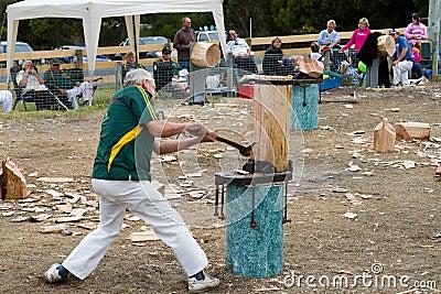 Evento di spezzettamento di legno Immagine Stock Editoriale