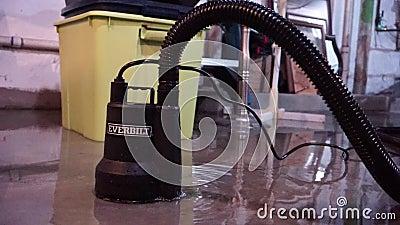 Everbilt nytto- pump som suger vatten