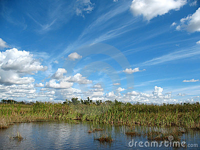 Everglades in Florida