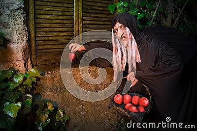 Evi Witch