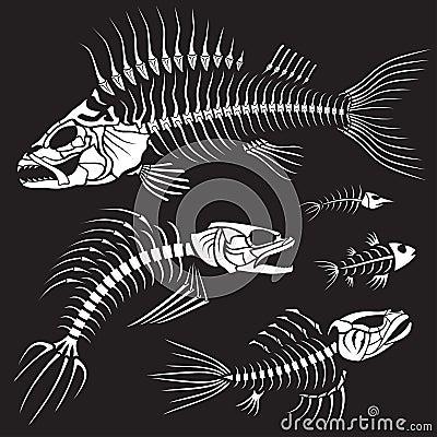 Evil Fish Sceleton Collection