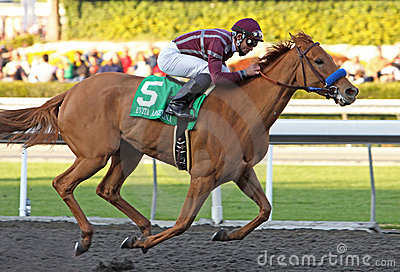 Evita Argentina Wins The La Brea Stakes Editorial Stock Photo
