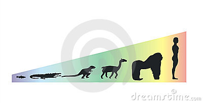 Evolution scale