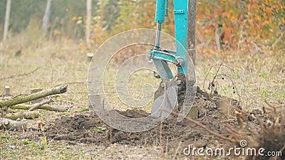 Excavadora excava raíces de árbol almacen de metraje de vídeo