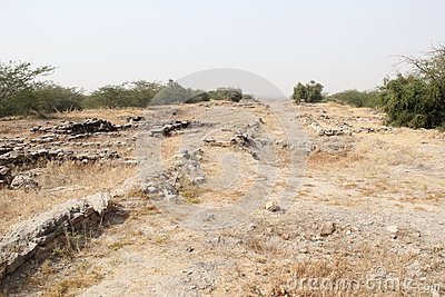 Excavated Harappa Civilization