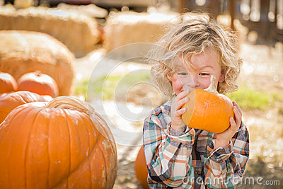 Excited Little Boy Sitting and Holding His Pumpkin at Pumpkin Patch