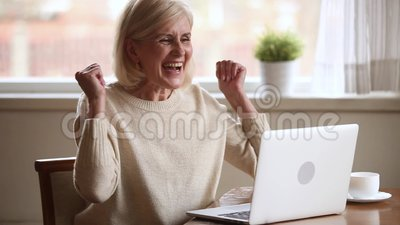 Excited senior woman feeling winner reading good online news. Excited senior middle aged woman feeling winner reading good online news on laptop, happy lucky old stock video