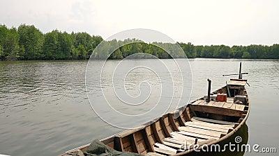 Excursão do barco dos manguezais nos manguezais Forest Conservation em Indonésia video estoque