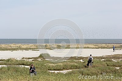 Excursion of natural monuments to the Wadden island Griend Editorial Photo