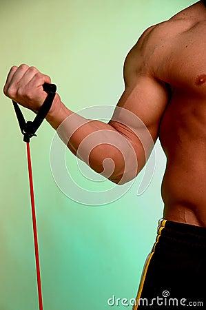 Free Exercise Stock Image - 523921