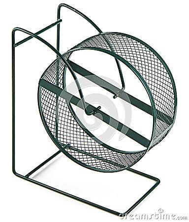 Exercise hamster wheel