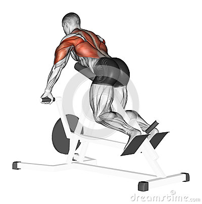 Free Exercising. End Of T-shaped Neck With Emphasis Stock Photos - 44124163