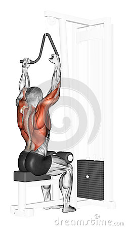 Free Exercising. End Of The Upper Block Narrow Grip Royalty Free Stock Image - 44124246